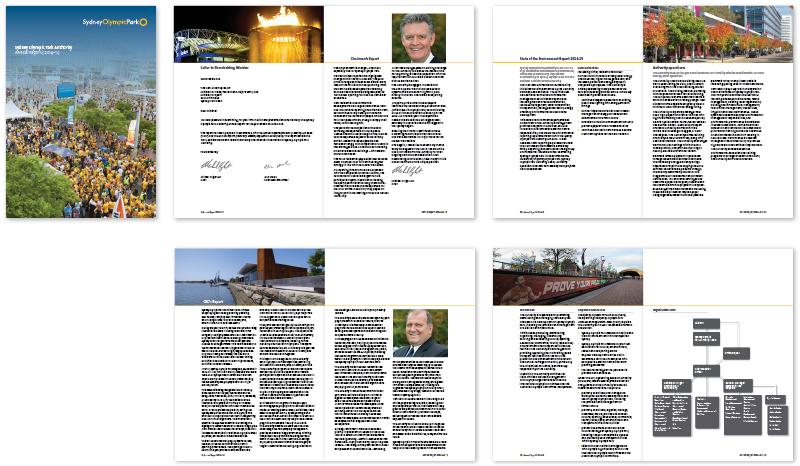 SOPA annual report